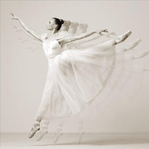 HAUTE PHOTO COLLECTION Leaping Beauty